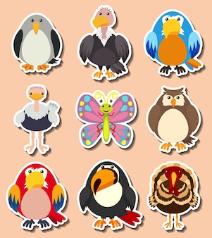 Sticker ontwerp met verschillende soorten vogels