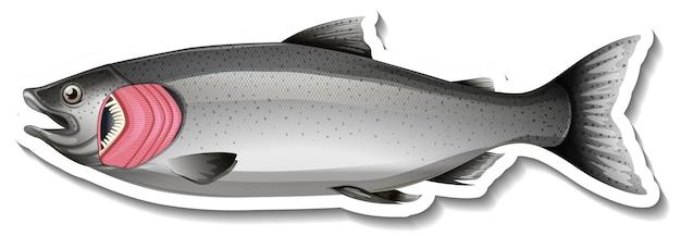 Sticker vis met kieuwen op witte achtergrond