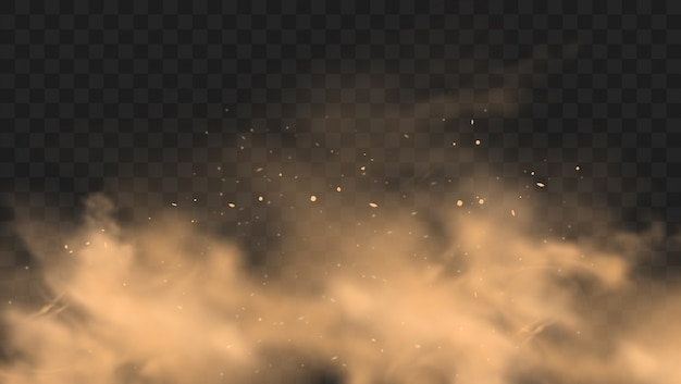 Stof zandwolk met stenen en vliegende stoffige deeltjes op transparante achtergrond.