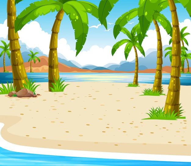 Strandscène met kokospalmen