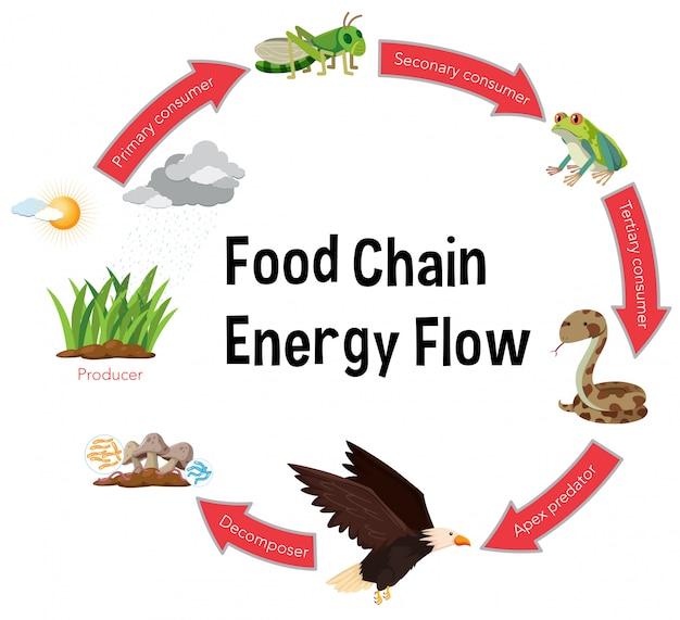 Stroomschema energieketen