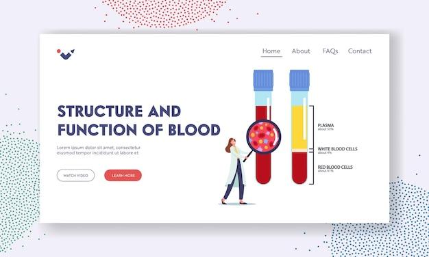 Structuur en functie van blood landing page template. levensbloed samenstelling. klein vrouwelijk dokterspersonage met enorm vergrootglas kijk op kolven met plasma en bloed. cartoon vectorillustratie