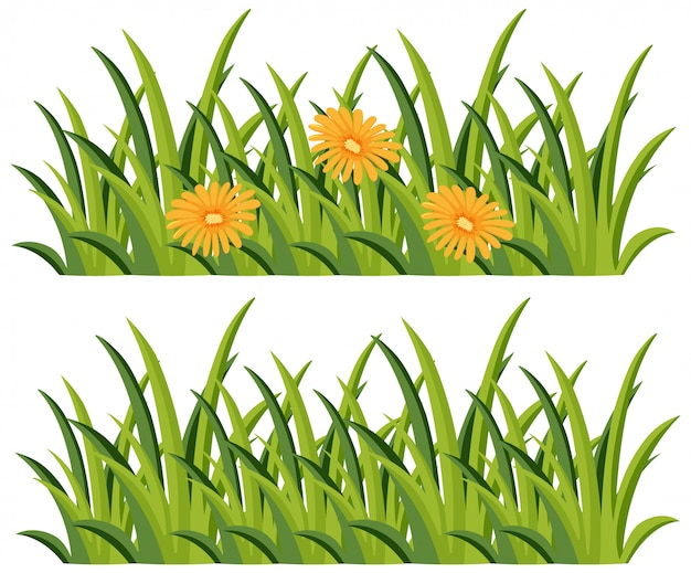 Struiken met en zonder bloemen