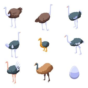 Struisvogel iconen set, isometrische stijl
