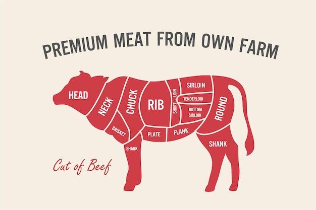 Stuk rundvlees set poster slager diagram en regeling koe vintage typografische handgetekende