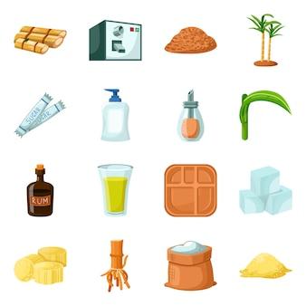 Suikerriet cartoon elementen. set elementen van suikerriet plant met natuurlijke blad op boerderij.