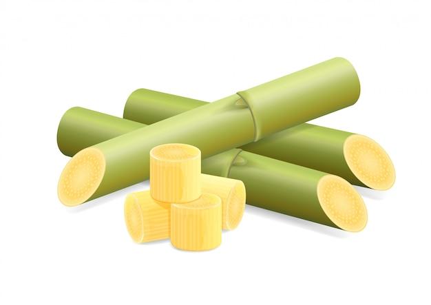 Suikerriet, rietsuiker, stukjes vers suikerriet groen
