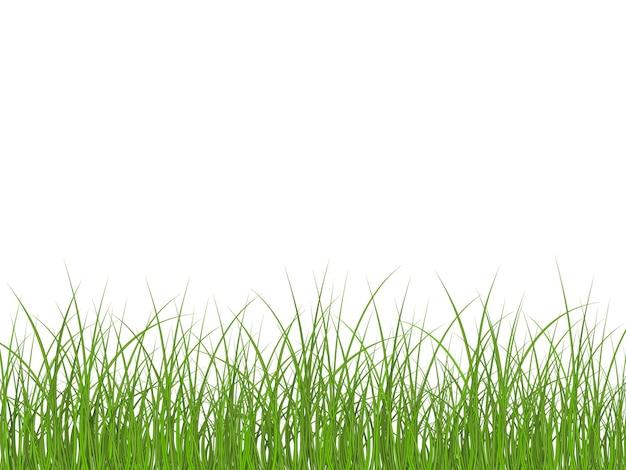 Super realistisch, gedetailleerd vers groen gras.