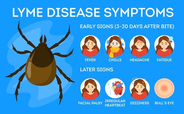 Symptomen van de ziekte van lyme. gevaar voor de gezondheid door teek