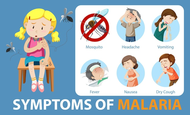 Symptomen van malaria cartoon-stijl infographic