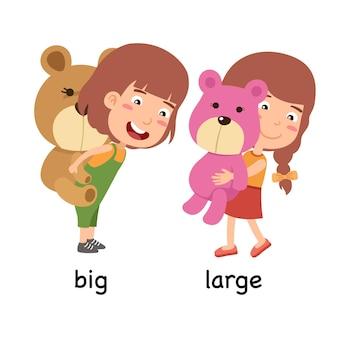 Synoniemen bijvoeglijke naamwoorden grote en grote vectorillustratie