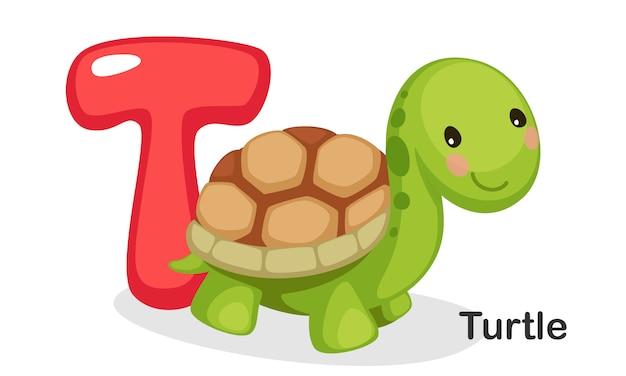 T voor turtle