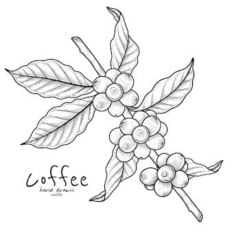 Tak van koffie met fruit hand getrokken illustratie