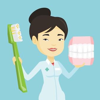 Tandarts met tandheelkundige kaak model en tandenborstel.