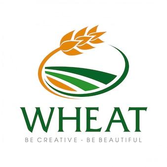 Tarwekorrel en tarwe rijst logo inspiratie