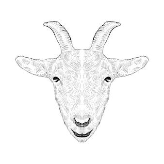Tatoeage en t-shirt ontwerp handgetekende schapen schets kunst