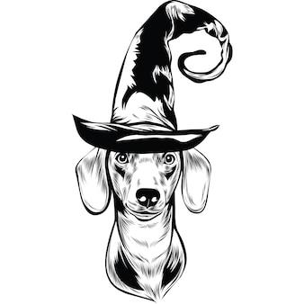 Teckelhond met heksenhoed voor halloween