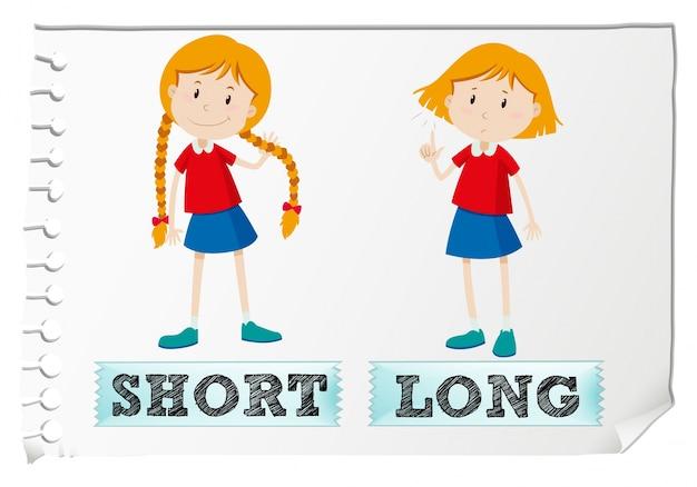 Tegenover adjectieven kort en lang
