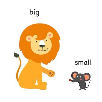 Tegenover grote en kleine vectorillustratie