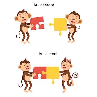 Tegenover om te verbinden en om vectorillustratie te scheiden