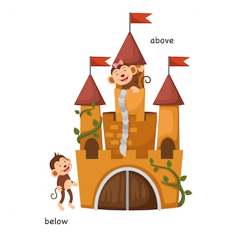 Tegenover onder en boven vectorillustratie