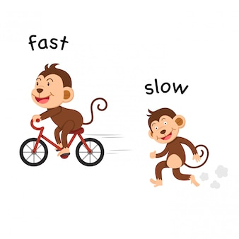 Tegenover snelle en langzame vectorillustratie