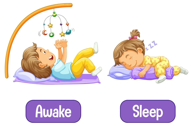 Tegenover woorden met wakker en slaap