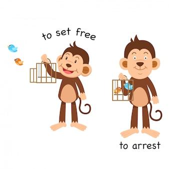 Tegenovergesteld om te bevrijden en vectorillustratie te arresteren
