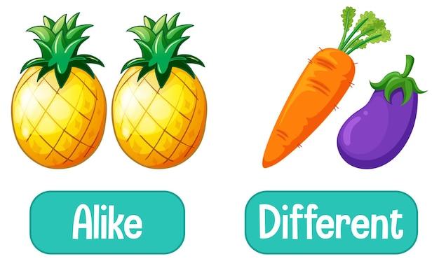 Tegenovergestelde woorden met gelijk en verschillend