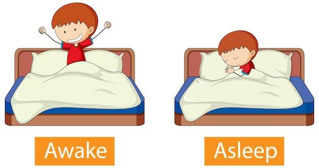Tegenovergestelde woorden met wakker en in slaap