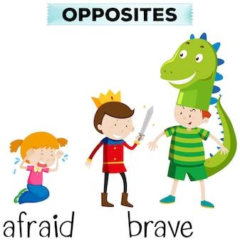 Tegenovergestelde woorden voor bang en dapper