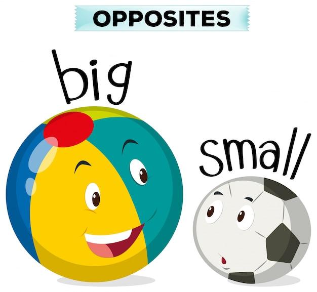 Tegenovergestelde woorden voor groot en klein