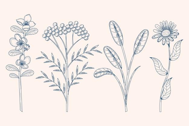 Teken met kruiden en wilde bloemen