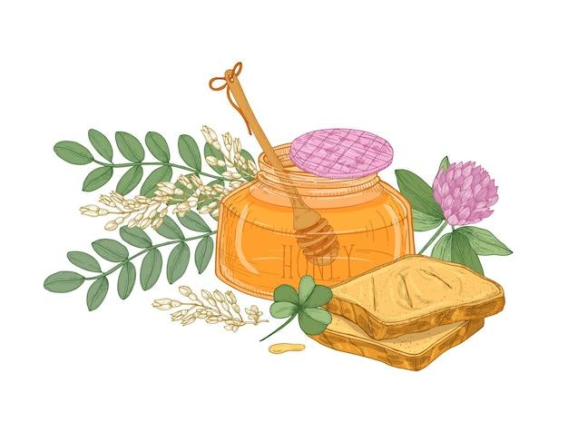 Tekening van beer in glazen pot met honing, paar sneetjes brood of toast, klaverbloem en acacia bloeiwijze. smakelijk gezond dessert.