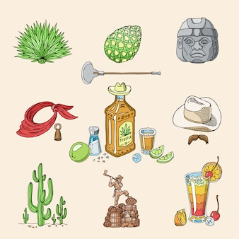 Tequila schoot mexicaanse alcohol in fles met limoen en zout in taqueria in mexico illustratie set van tropische drank en cactus geïsoleerd op achtergrond