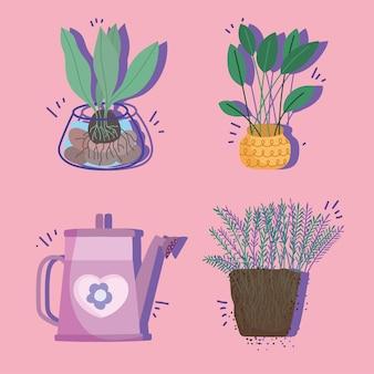 Thuis planten set