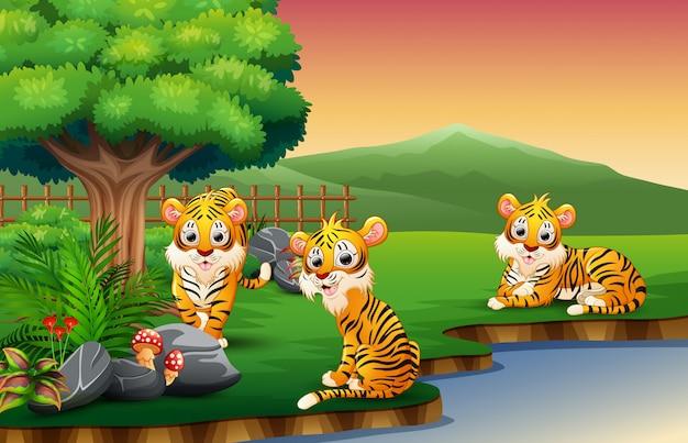 Tiger-cartoon geniet van de natuur bij de rivier