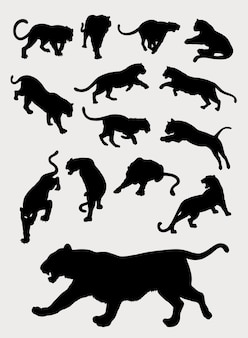 Tiger, panther, leopard, gesture silhouettes