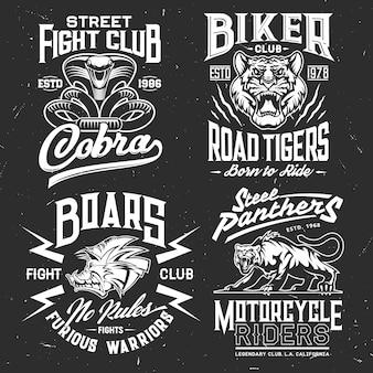Tijger, cobra, panter en zwijn t-shirt print van vechtsport en motorclub aangepaste kledingsjabloon. wild agressief dier en aanvallende slang grunge badges met letters