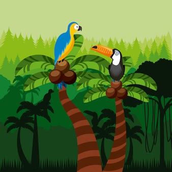 Toekan en ara vogels
