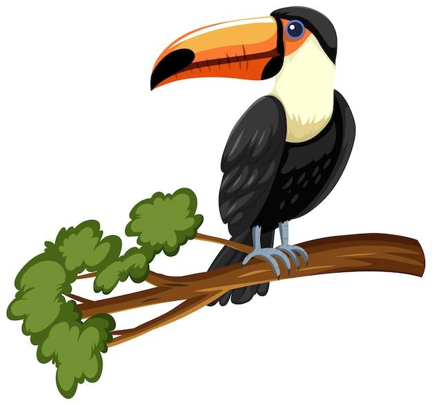 Toekanvogel op een tak die op wit wordt geïsoleerd Gratis Vector