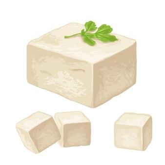 Tofu. platte vectorillustratie kleur voor menu, poster, label. geïsoleerd op witte achtergrond