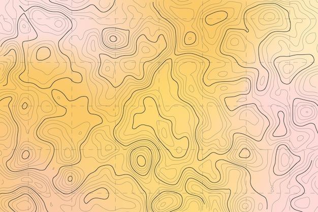 Topografische kaart concept