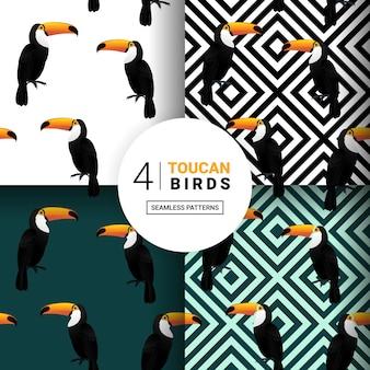 Toucan bird pattern seamless packs voor.