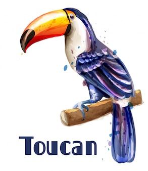 Toucan papegaai aquarel