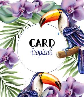Toucan tropische kaart aquarel