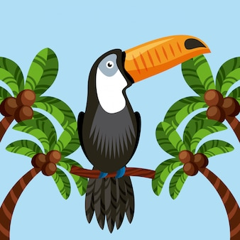Toucan vogel pictogram