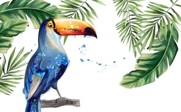 Toucan zomer aquarel