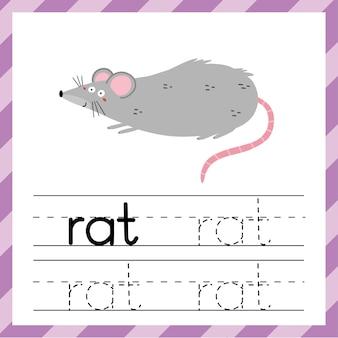 Tracing werkblad met woord rat. leermateriaal voor kinderen.
