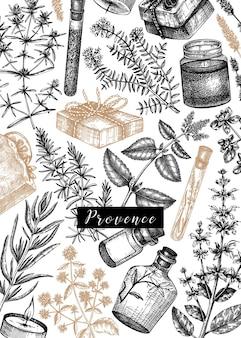 Traditionele provence kruiden ontwerp handgeschetst aromatische en geneeskrachtige planten sjabloon